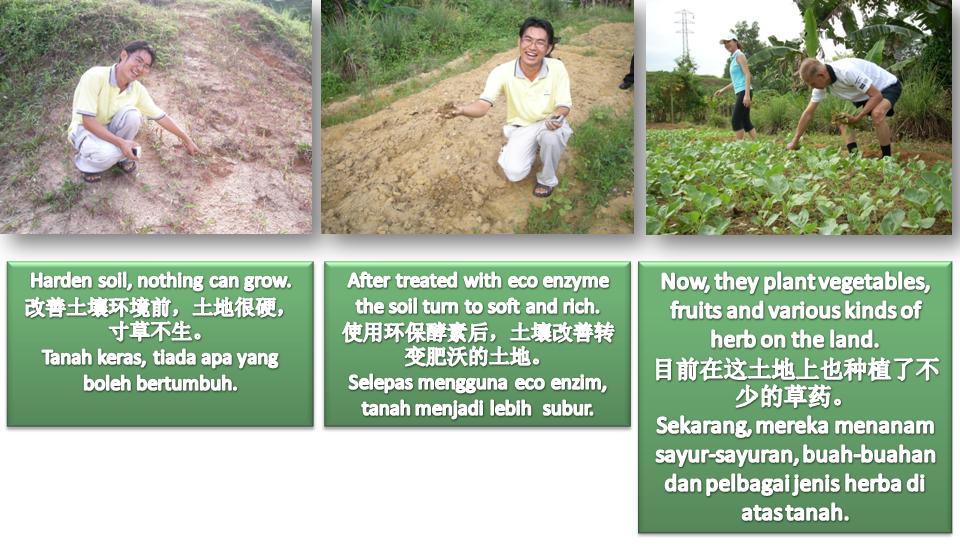 改善土壤 CEM